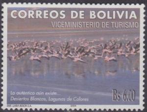 Flamencos boliviap